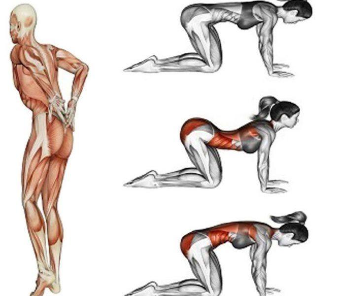 Упражнение гиперэкстензия в домашних условиях